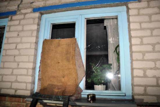 В Артемовске владелец питбуля, искусавшего девочку, выбил все окна в её доме